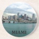 Práctico de costa del horizonte de Miami la Florid Posavaso Para Bebida