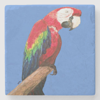 Práctico de costa del loro del Macaw. Arte Posavasos De Piedra