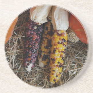 Práctico de costa del maíz indio posavasos cerveza