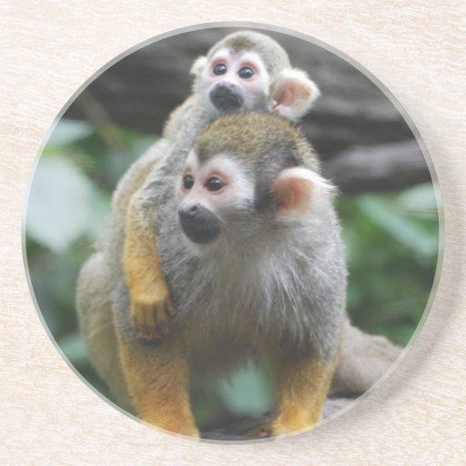 Práctico de costa del mono de ardilla del bebé posavaso para bebida