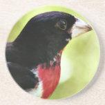 Práctico de costa del pájaro del Rosa-Breasted Posavasos Personalizados