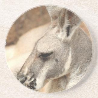 Práctico de costa del perfil del canguro posavasos para bebidas