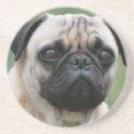 Práctico de costa del perro de perrito del barro a posavasos para bebidas