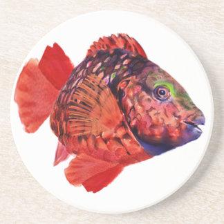 Práctico de costa del pez papagayo de la luz de pa posavasos personalizados