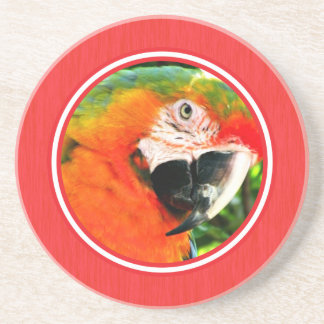Práctico de costa del rojo del Macaw del escarlata Posavasos Personalizados