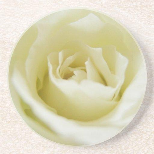 Práctico de costa del rosa blanco posavasos manualidades