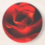 Práctico de costa del rosa rojo posavasos personalizados