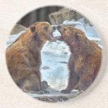 Práctico de costa del Smooch del oso Posavasos Manualidades