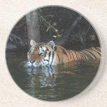 Práctico de costa del tigre de Bengala Posavaso Para Bebida