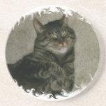 Práctico de costa durmiente del gato del gatito de posavasos cerveza