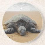 Práctico de costa en peligro de la tortuga de mar posavasos manualidades