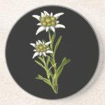 Práctico de costa floral de Edelweiss Posavasos Personalizados