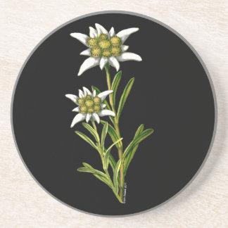 Práctico de costa floral de Edelweiss Posavasos De Arenisca