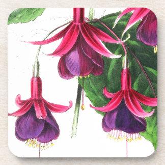 Práctico de costa floral de la flor fucsia apoyavasos