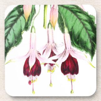 Práctico de costa floral de la flor fucsia posavasos para bebidas