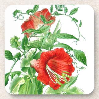 Práctico de costa floral de las tazas de las portavasos