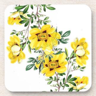 Práctico de costa floral de té de la flor botánica portavasos
