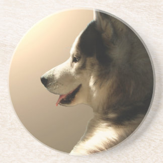 Práctico de costa fornido del perro del lobo del M Posavasos Manualidades