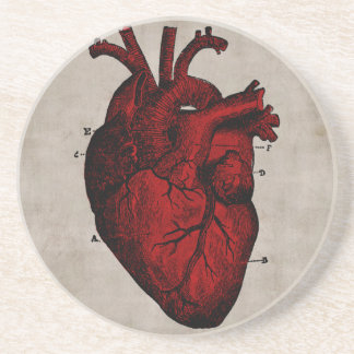 Práctico de costa humano del corazón posavasos personalizados