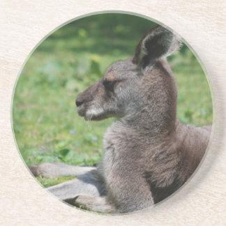 Práctico de costa lindo del canguro posavasos diseño