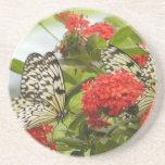 Práctico de costa - mariposas y flores posavasos para bebidas