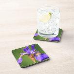 Práctico de costa púrpura del corcho de la flor de posavasos de bebida