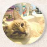 práctico de costa relajado del gatito posavasos personalizados