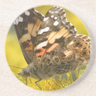 Práctico de costa rojizo de la mariposa de Emperer Posavaso Para Bebida