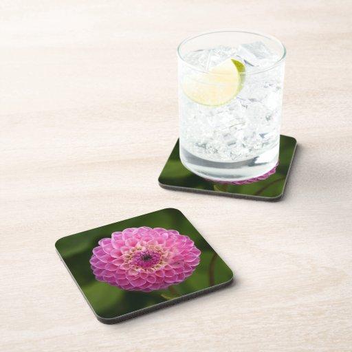 Práctico de costa rosado del corcho de la flor de  posavaso