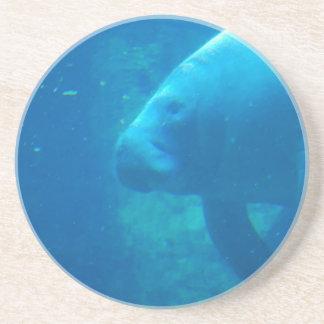 Práctico de costa subacuático del Manatee Posavaso Para Bebida