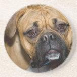 Prácticos de costa americanos del perro del boxead posavasos personalizados