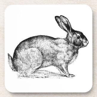 Prácticos de costa blancos del conejo, sistema de  posavasos de bebidas