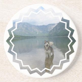 Prácticos de costa de Alaska del perro de Malmaute Posavasos Para Bebidas