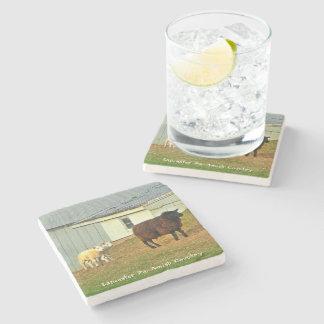 ¡Prácticos de costa de Amish, ovejas de la madre y Posavasos De Piedra