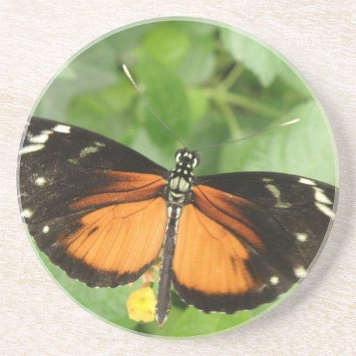 Prácticos de costa de la mariposa de Longwing del  Posavasos Para Bebidas