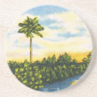 Prácticos de costa de la puesta del sol de la palm posavaso para bebida