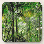 Prácticos de costa de la selva tropical posavaso
