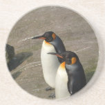 Prácticos de costa de los pares del pingüino posavaso para bebida