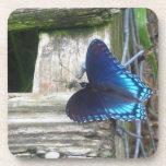 Prácticos de costa de reclinación de la mariposa a posavasos de bebidas