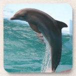 Prácticos de costa de salto del corcho del delfín posavasos