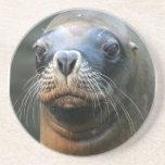 Prácticos de costa de Wet Seal Posavasos Personalizados