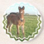 Prácticos de costa del bebé del caballo posavasos diseño