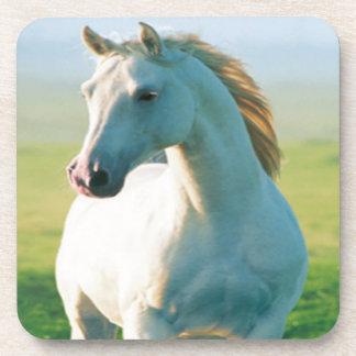 Prácticos de costa del caballo blanco posavasos