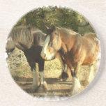 Prácticos de costa del caballo de proyecto posavasos manualidades