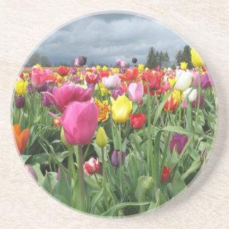 Prácticos de costa del campo de los tulipanes posavasos diseño