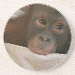 Prácticos de costa del chimpancé del bebé posavasos manualidades