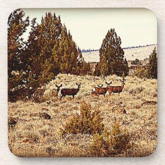 Prácticos de costa del ciervo mula posavasos de bebidas