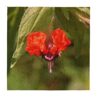 Prácticos de costa del corcho de la flor de la car posavasos