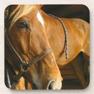 Prácticos de costa del corcho del diseño del cabal posavaso