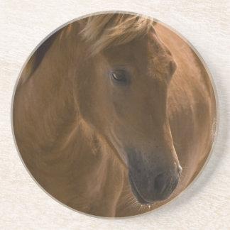 Prácticos de costa del diseño del caballo de la ca posavaso para bebida